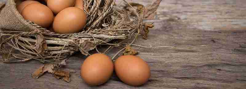 Don't put all your eggs in one basket, especially not in volatile market conditions