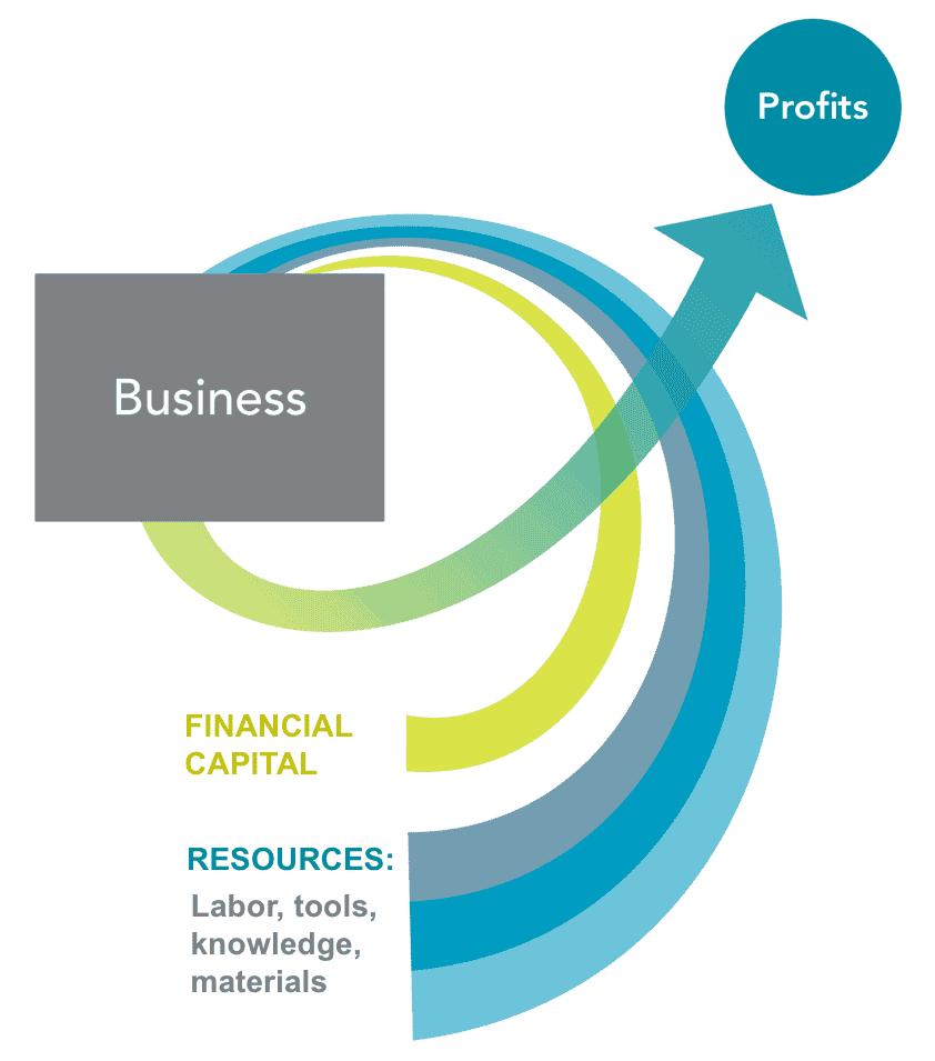 Financial Capital Role